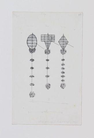 Drawings of Māori kites
